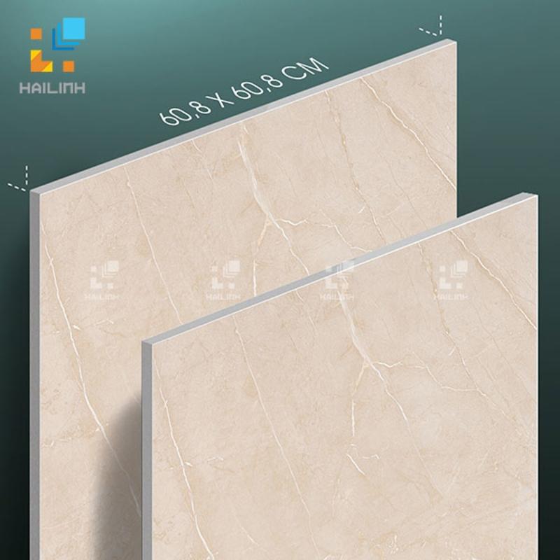 Gạch Tây Ban Nha HL6645B