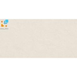 Gạch Taicera PC600x298-542N