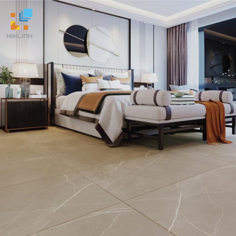 Gạch Ấn Độ HLAD6112102 60x120