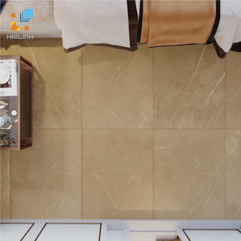 Gạch Ấn Độ HLAD6112103 60x120