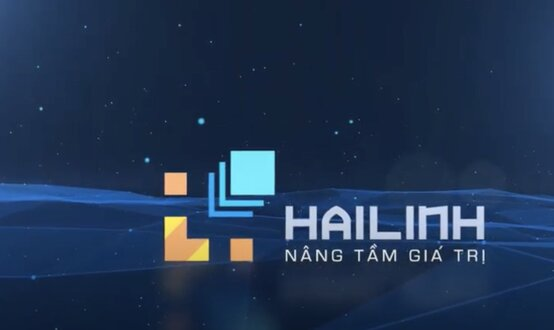Giới thiệu công ty THHH Kinh doanh và Thương mại Hải Linh